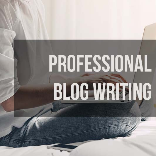 Professional Blog Writing