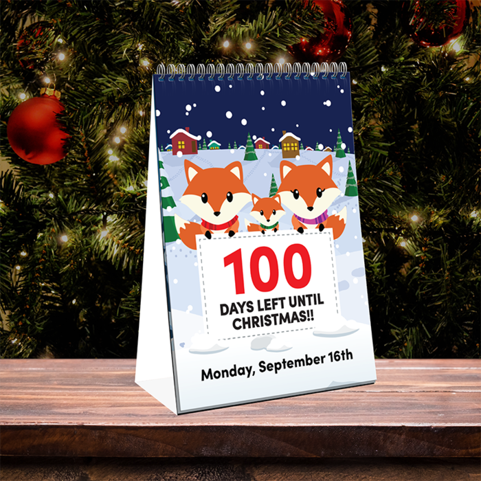 Sell out 100-day Christmas countdown calendar returns for 2019