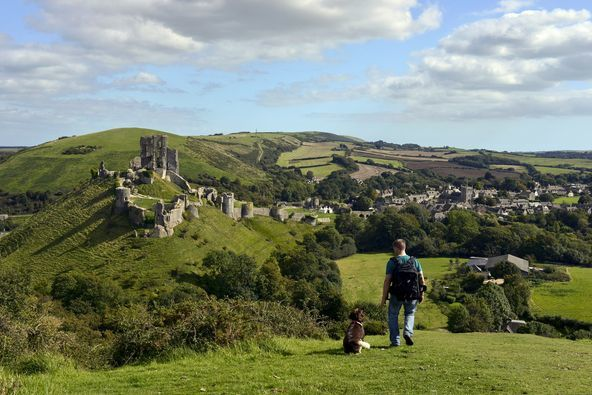 Dorset Holiday Cottages see upturn in bookings as demand for pet-friendly holiday accommodation soars